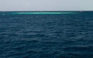 rafa, jakich sa tysiące na Malediwach