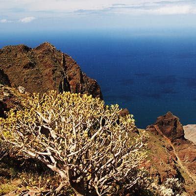 czarter Baleary - Wyspy Kanaryjskie