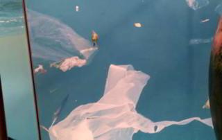 Stop zanieczyszczeniu morza plastikiem