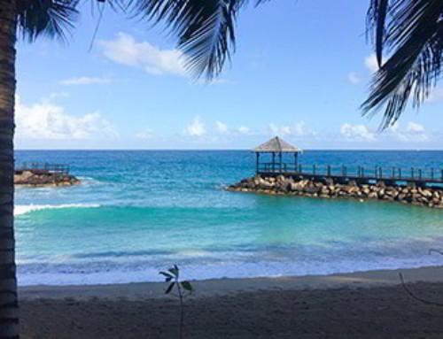 Katamarany i jachty na Karaibach – Grenada taniej o 35%