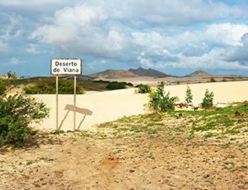Z Kanarów na Wyspy Zielonego Przylądka – one way