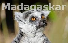 czarter-jachtow-Madagaskar.jpg