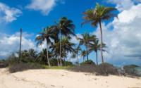 Czarter jachtów Karaiby