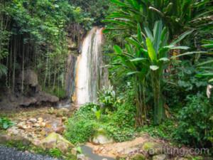 Wodospad Diamentowy otoczony ogrodem botanicznym
