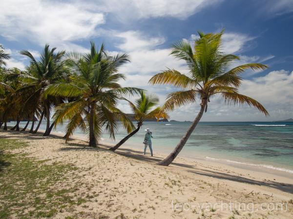 Mustique - bajkowe plaże bez tłumów