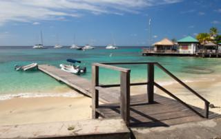Basil's Bar na wyspie Mistique
