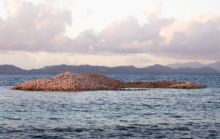 Czarter na Karaibach - wyspa Mustique